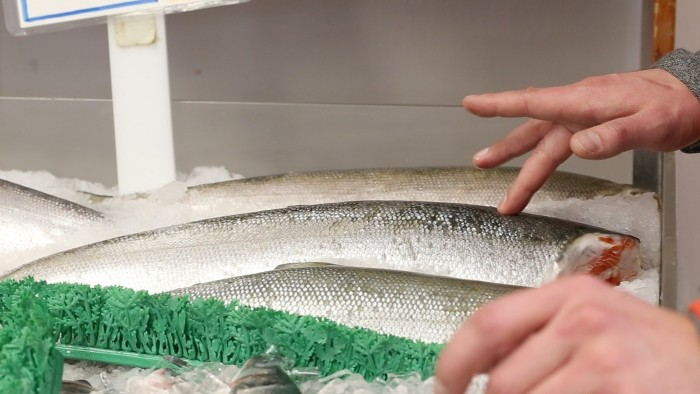 Meat Class_Going Shopping_Fish_pressing down