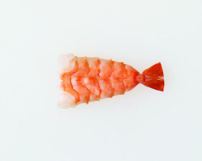 Shrimp_Nigiri_14