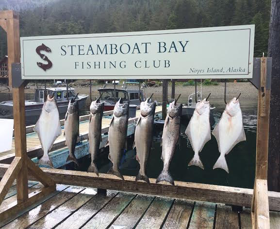 Given Steamboat's Bay unique location, you can catch from over 20 species, including wild Alaska king salmon, silver salmon, halibut, and rockfish. (Photo credit: Katie Chang)
