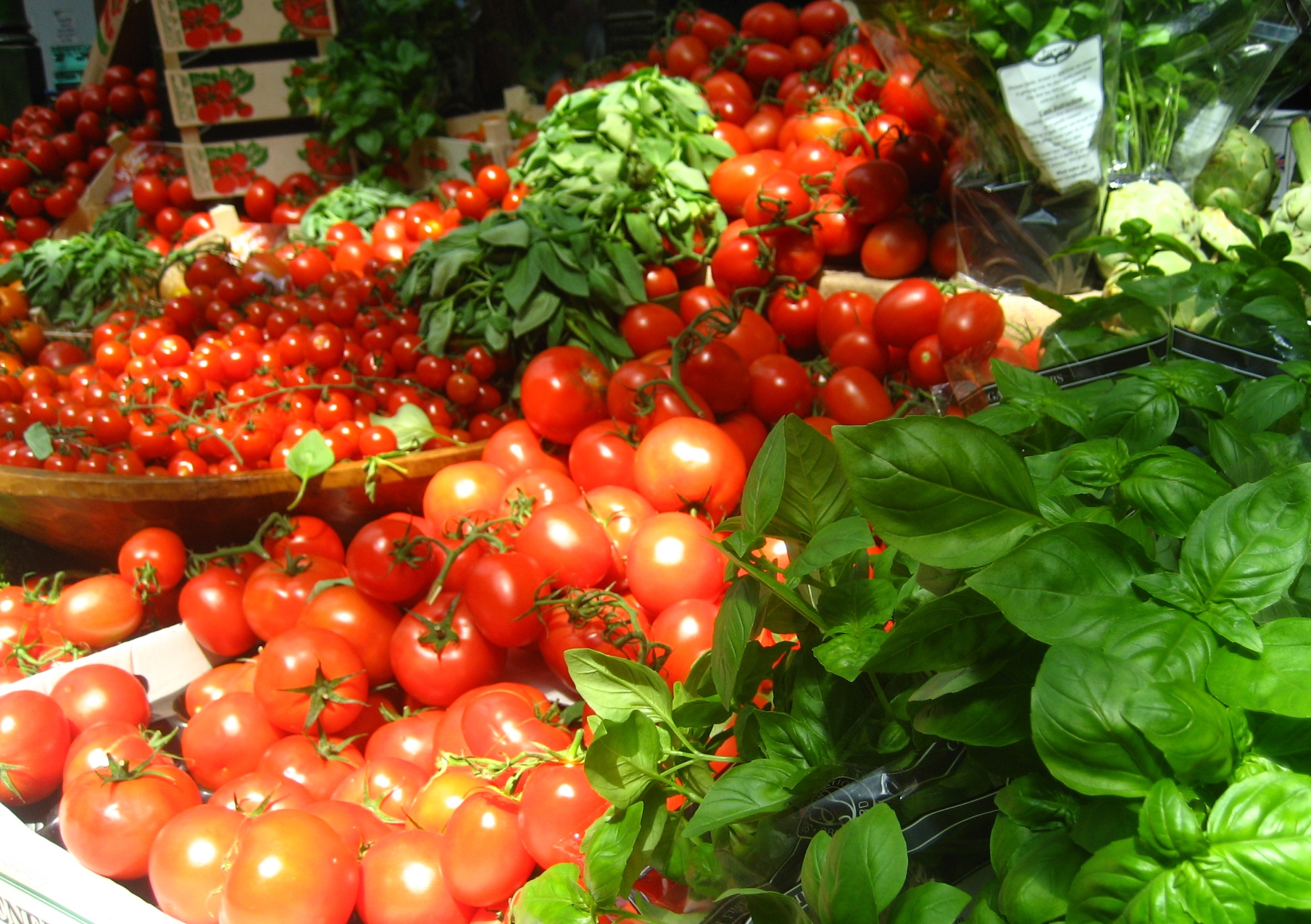 Plant Tomatoes and Basil Together To Repel Bugs