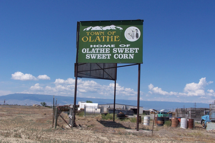 Town of Olathe by J. Stephen Conn