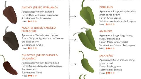 chiles family tree