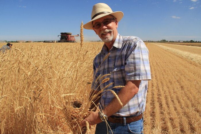 Steve Sossaman is the owner and operator of Hayden Flour Mills at Sossaman Farms, which specializes in heritage grains. (Photo credit: Hayden Flour Mills)