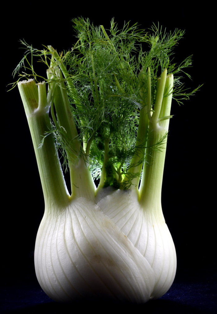 Fennel by pha10019 via flickr