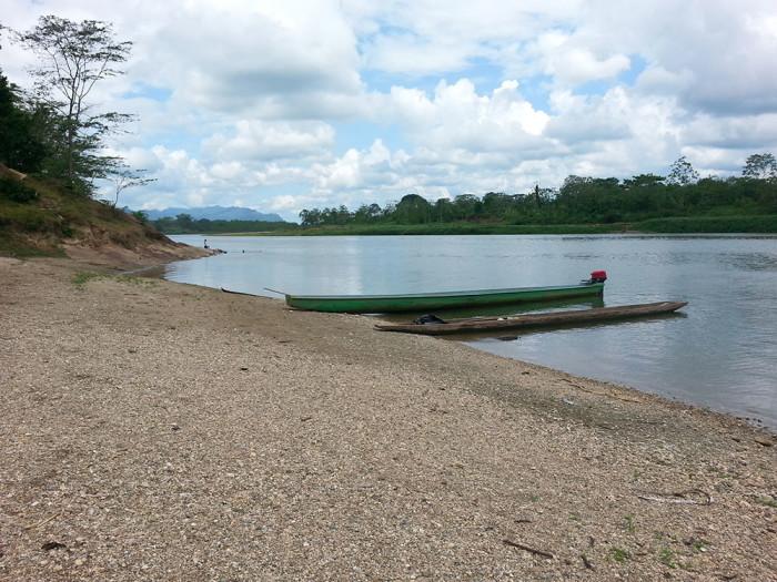 CastronovoHonduran_canoes_take_cacao_upstreamSmall