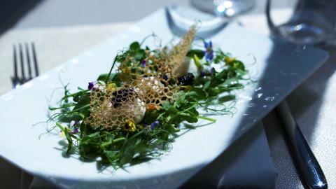 Scott Conant next-level caesar salad
