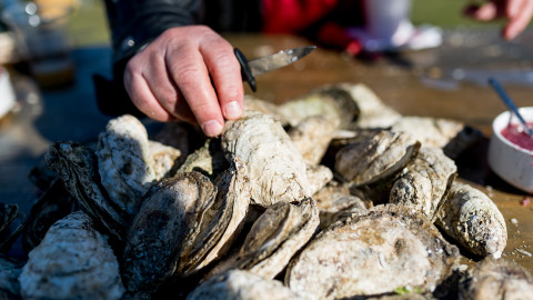 oysters at Charleston Wine and food festival